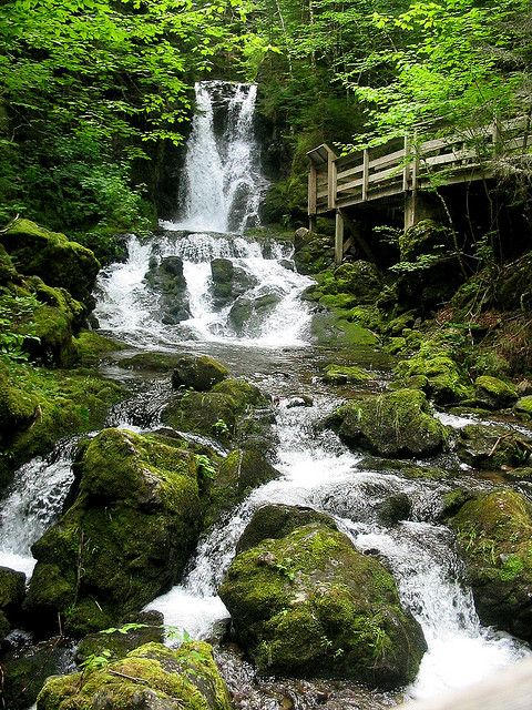 Dickson Falls, Fundy National Park, New Brunswick