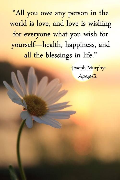 """""""All you owe any person in the world is love, and love is wishing for everyone what you wish for yourself—health, happiness, and all the blessings in life."""" ― Joseph Murphy"""