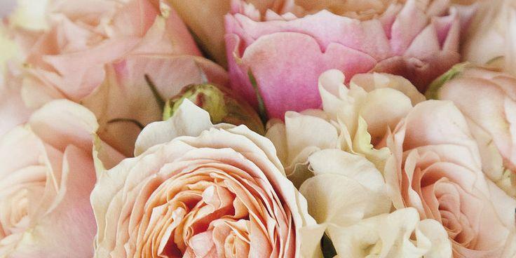 Le Manoir aux Quat'Saisons | Beyond Weddings