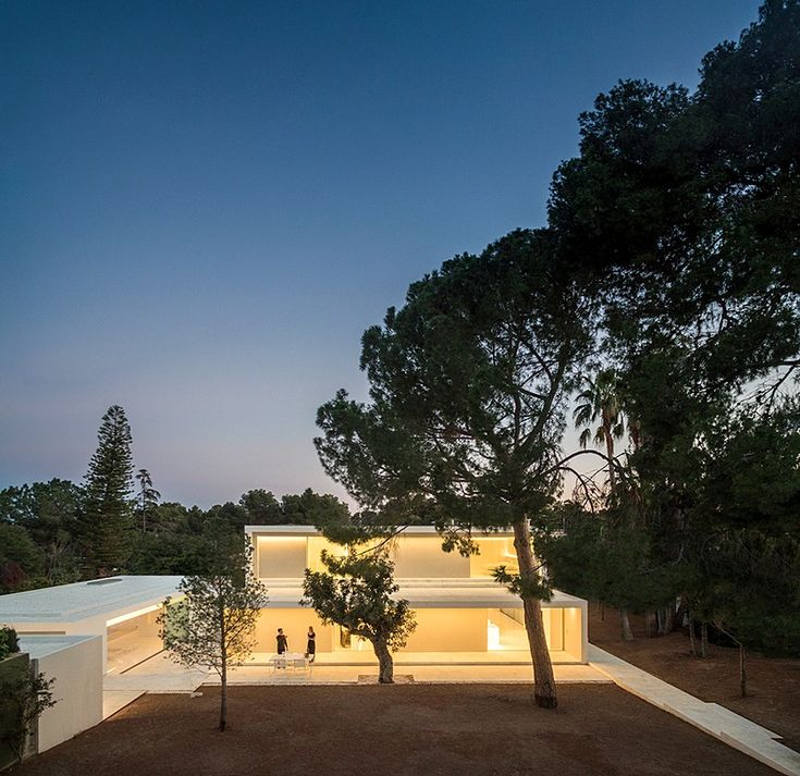 House between the pine forest fran silvestre arquitectos