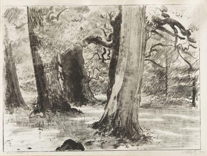 Leon Wyczółkowski - Las, 1922 r.
