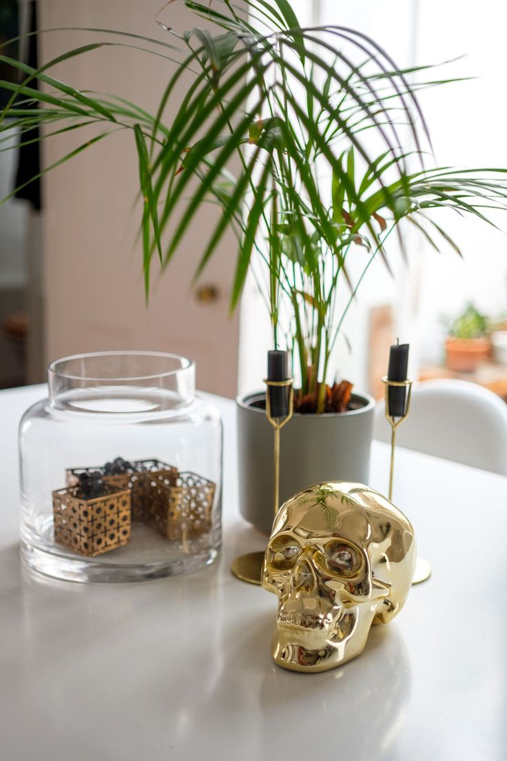 Mr mr mr mr price home catalogue 2014 - The Gold Skull Is From Mr Price Home And Was Given To Darren As A Gift