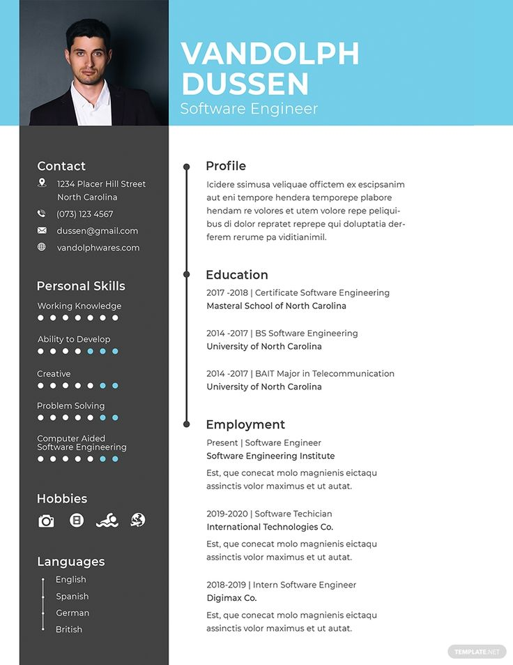 FREE Resume/CV for Experienced Software Engineer Template
