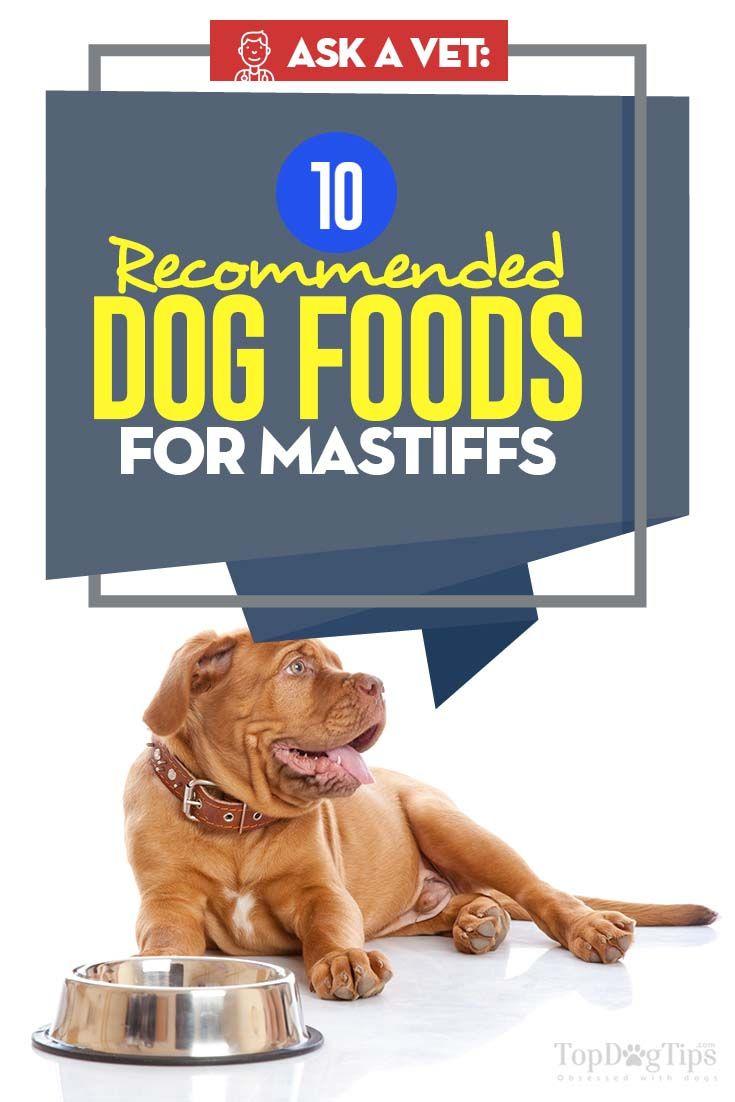 Top 10 Best Dog Foods For Mastiffs Dog Food Recipes Best Dog Food Mastiffs