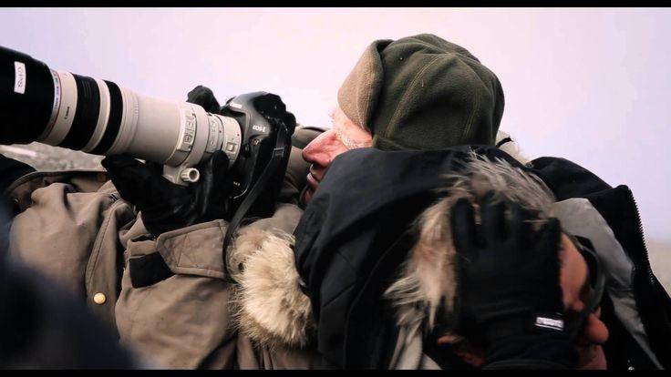 Durante los últimos 40 años, el fotógrafo Sebastião Salgado ha viajado por los cinco continentes siguiendo los pasos de una humanidad en constante cambio. Ha...