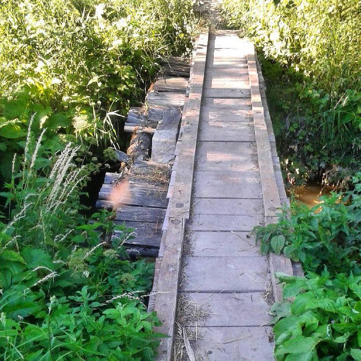 #drewniany #mostek #woda #zieleń #woodenbridge #water #grass #nature