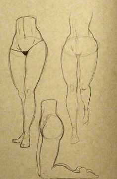 leg drawing reference&39 in Drawing References and Resources