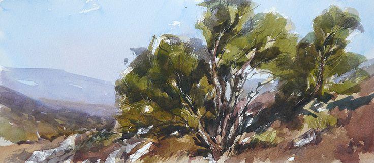 Arie Jekel | Highlands | Watercolor