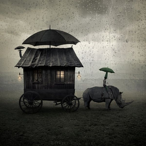 A little caravan with a smokestack, an umbrella, porch lights and pulled by a rhinoseros!