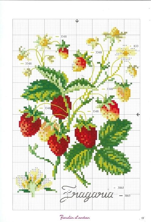 Rama de fresas