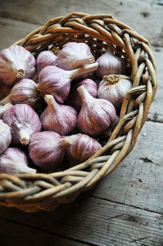One of the BEST and most EASIEST things to grow - perennial garlic. (Perennial means it grows back year after year) It stores well, keeps aphids off your roses, and helps prevent a huge variety of illnesses and diseases! Get on board!