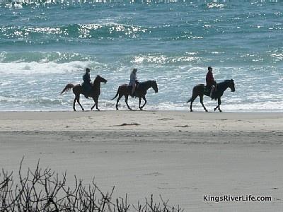Horseback riding on Rosarito Beach, Baja Mexico
