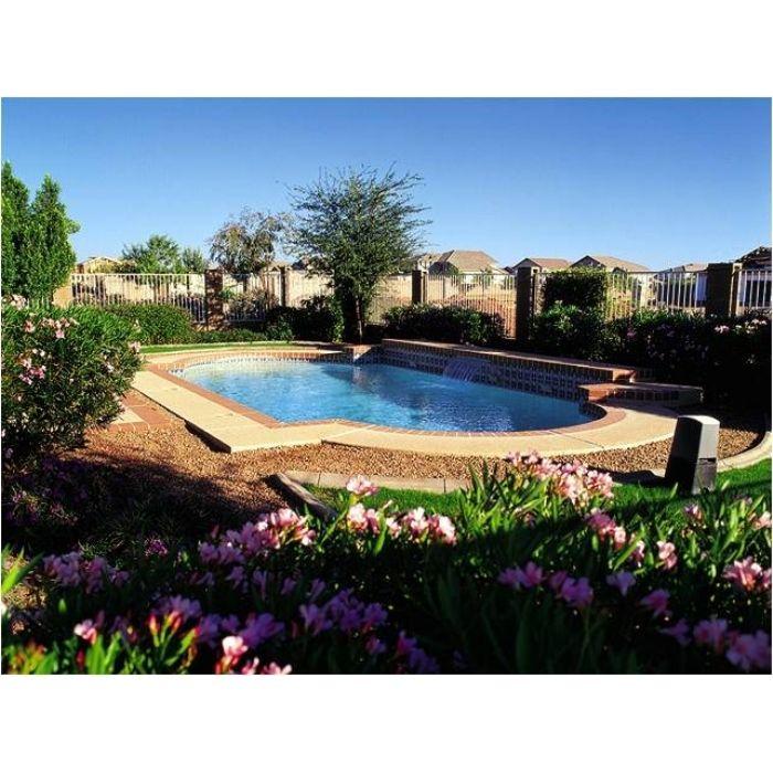 25 Best Ideas About Pool Companies On Pinterest