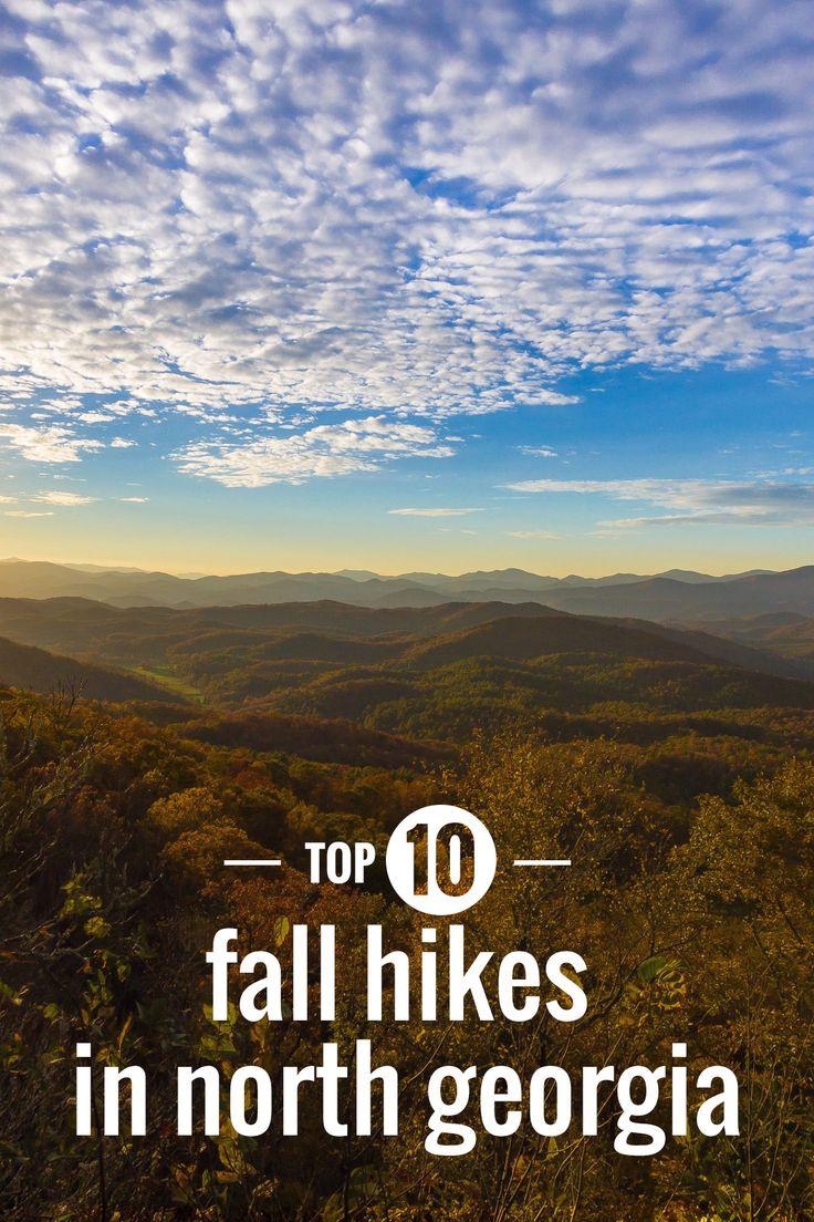 25+ Best Autumn Leaf Color Ideas On Pinterest