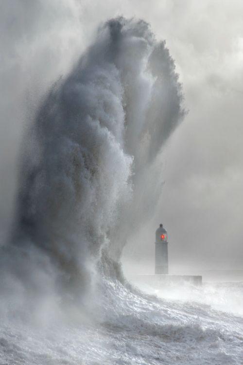 tulipnight:  Lighthouse Wave bySteve Garrington