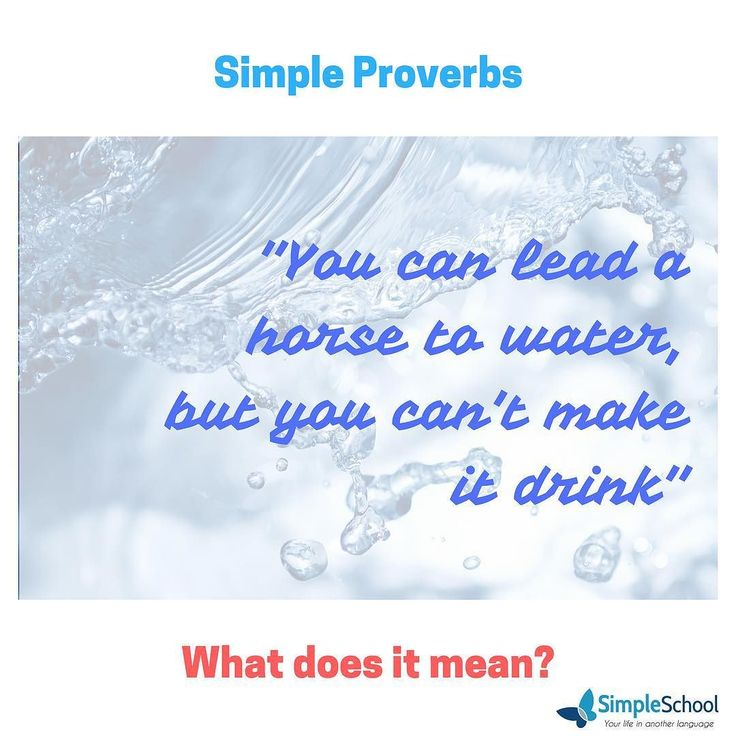 What does it mean? Do you agree with it?  #simple #simpleschool #simpleenglish #englishassecondlanguage #learningenglish #idiomas #aprendendo #learning #share #compartilhe #haveagoodday #tenhaumbomdia #simpleproverbs #simplesayings #aprendaingles #proverbs #sayings