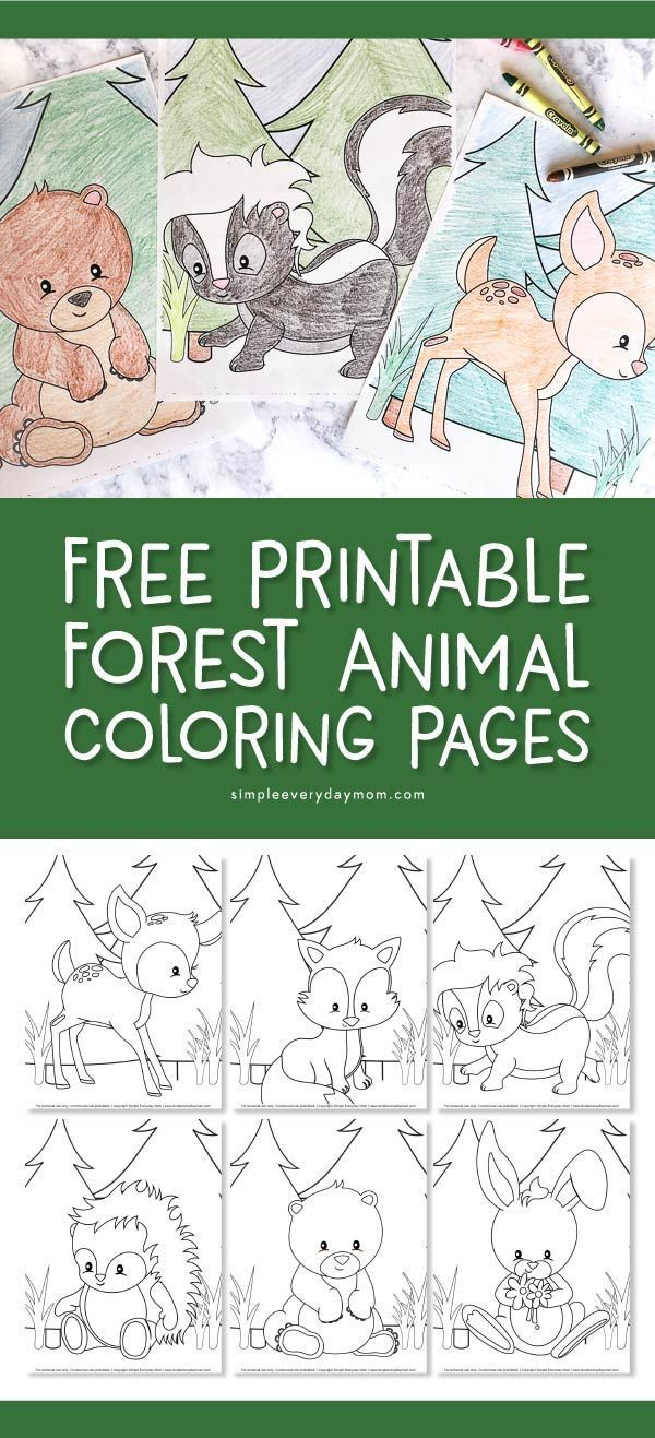 Free Printable Woodland Animal Coloring Pages For Kids | Preschool ...