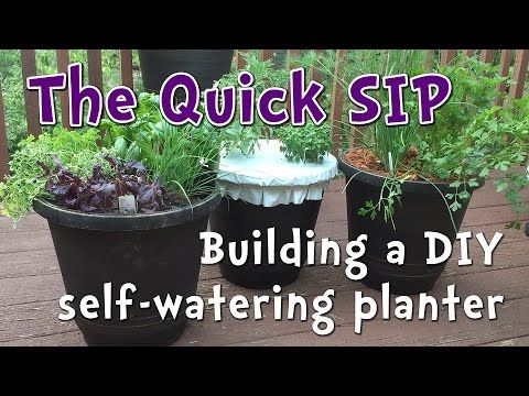 """Build A Productive DIY Self Watering Planter in 5 Minutes """"WOW""""!"""