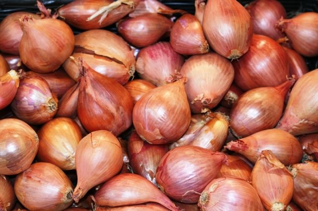 Shallots. So good. I need to add them to my garden.
