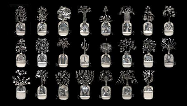 Fiona Hall, 'Paradisus Terrestris' (1989-1990) - image.
