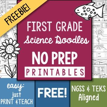 I worry that Science gets overlooked in the early grades and that is why I offer this: FREE 13 PAGE Sampler to my:NO PREP 200+ Page First Grade SCIENCE Printables packed with engaging ways to teach Science! Unique drawings that help students understand science concepts, NGSS and TEKS aligned.