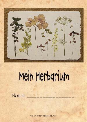 Herbarium: Anleitung, Vorlage, Informationsblätter zu 20 einheimischen Blumen
