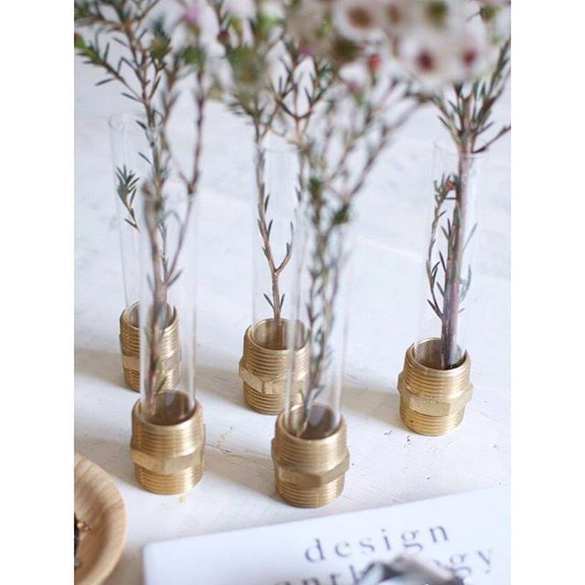 Currently on the blog how to DIY these beautiful little vases using test tubes and brass nutsphoto by @apairandaspare #aninterioraffair #aninterioraffairblog #diy #diyblog #diyblogger #diyinterior #diydecor #interior #interiordesign #interior4all #interior123 #interior125 #interiorinspiration #inredning #inredningsblogg #doityourself #återbruk #testtubevase #nuts #brassnuts by an.interior.affair