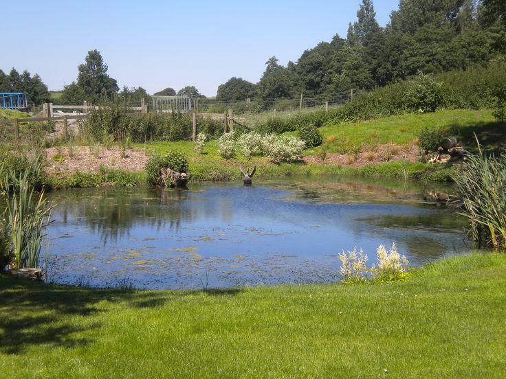 Inspiring large pond 2 landscaping around large ponds for Landscaping around ponds