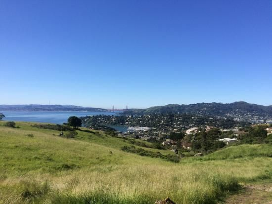 Book your tickets online for the top things to do in Tiburon, California on TripAdvisor: See 330 traveler reviews and photos of Tiburon tourist attractions. Find what to do today, this weekend, or in July. We have reviews of the best places to see in Tiburon. Visit top-rated & must-see attractions.