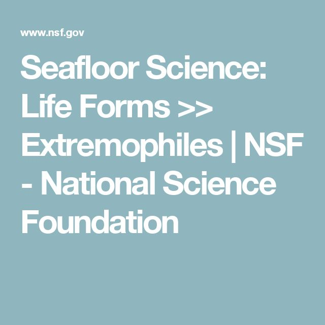 Seafloor Science: Life Forms >> Extremophiles | NSF - National Science Foundation