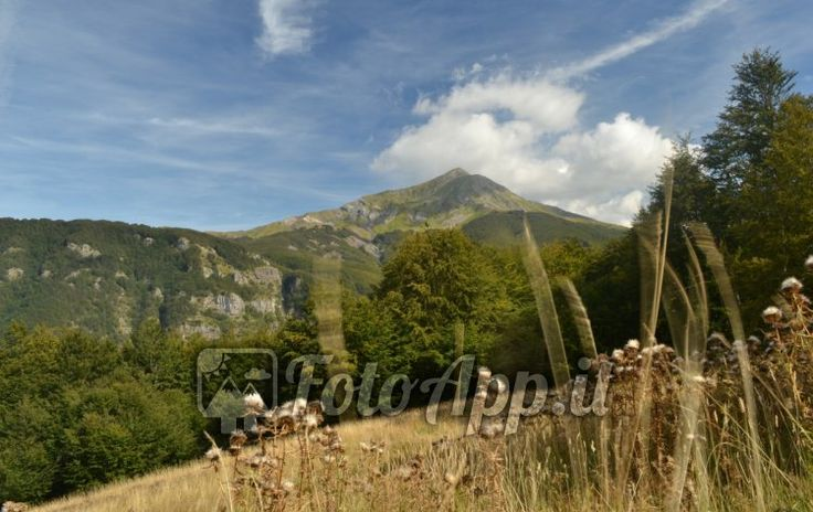 Monte Cusna visto da Piano di Ligonchio