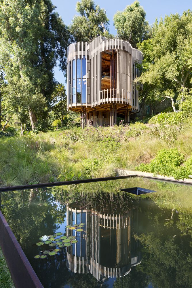 Gallery of Tree House / Malan Vorster Architecture Interior Design - 17