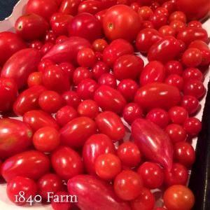 Freezing Cherry Tomatoes for Long Term Storage » 1840farm.com