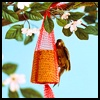 Bird Houses, Perches, and Feeders Crafts