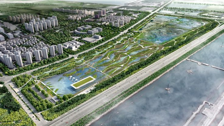 Funded by the Asia Bank and led by the Tianjin Economic-Technological Development Area (TEDA) the Lingang Bird Sanctuary is an ambitious project to deliver a flagship ecological wetland precinct. Located along the key bird migration route known as the East Asian Australasian Flyway the wetland design responds to targeted environmental conditions to attract and offer refuge for several endangered bird species. Spanning 61 hectares the landscape has been specifically designed to support the…