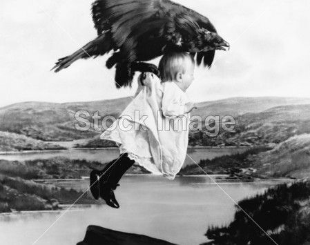 Baby being kidnapped by a vulture