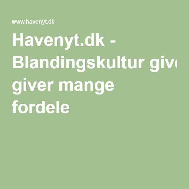 Havenyt.dk - Blandingskultur giver mange fordele