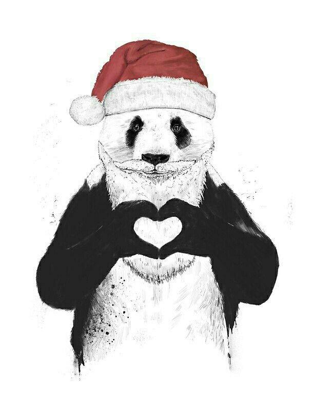 распущены, совершенно новогодние картинки с пандами свадебные фотографии очень