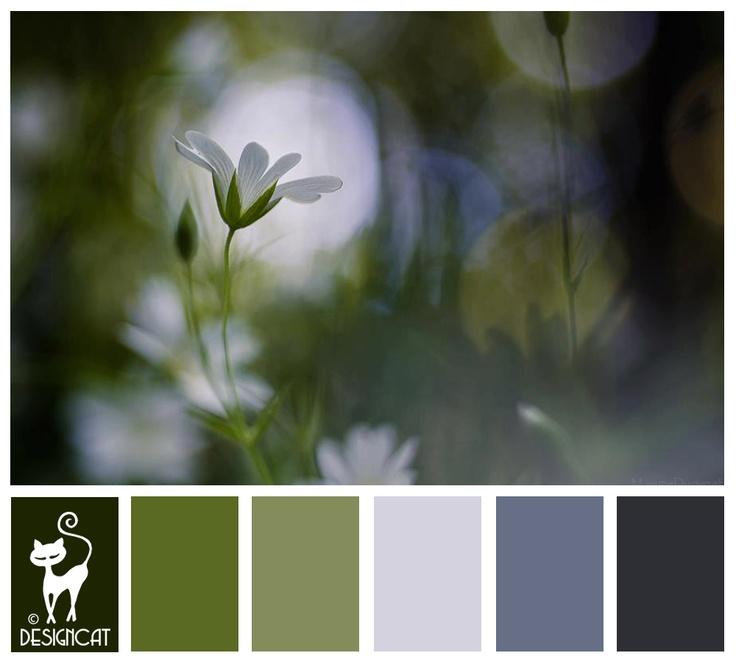 Solo 3 - Green, Fern, Kaki, Slate, blue - Designcat Colour Inspiration Board