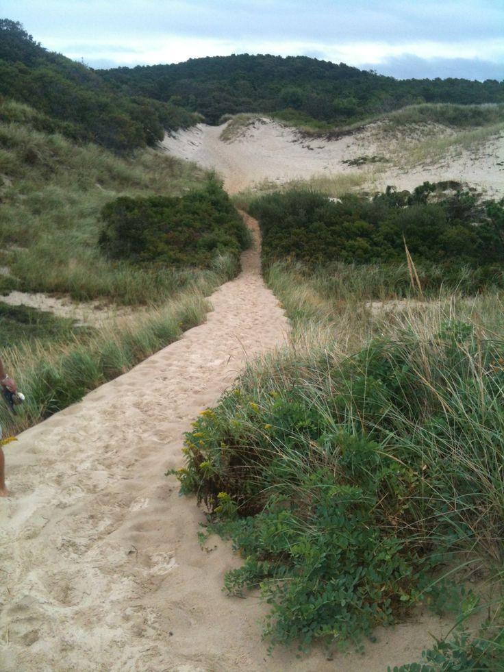 Wellfleet Cape cod beaches, Beyond the sea, Scenic