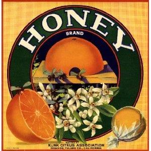 Ivanhoe Honey Bee Orange Citrus Fruit Crate Label Art Print