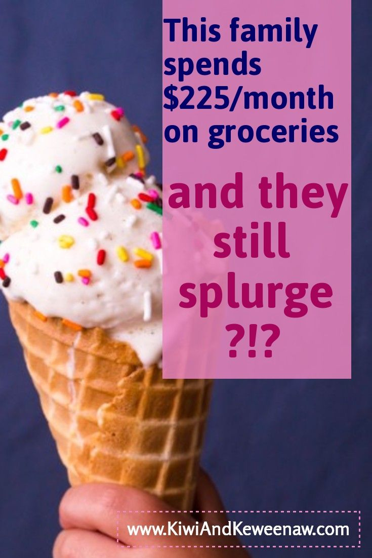 This is an amazing frugal blog that has so many tips to save money on groceries! See how they went from spending over $600 on groceries each month to getting their grocery budget down to $225/month! How to enjoy living on a budget and eat well! Vegan grocery splurges on a budget! Frugal living, simple living, Kiwi and Keweenaw