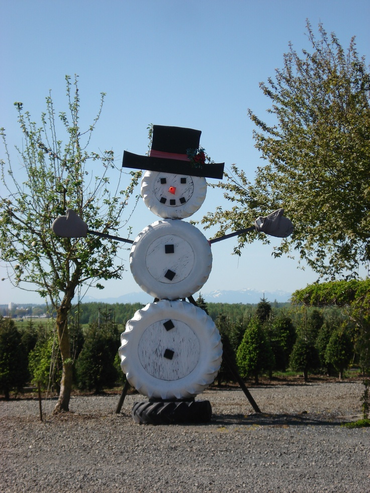 Snow Man At Stoney Ridge Farm Everson Wa Photo Taken By
