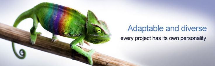 Adaptable and Diverse, every software development project has its own personality!