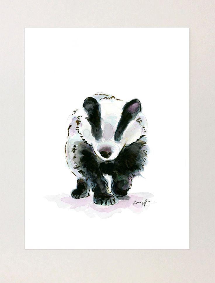 Florence the Badger - A4 Print of Orginial Watercolour Painting