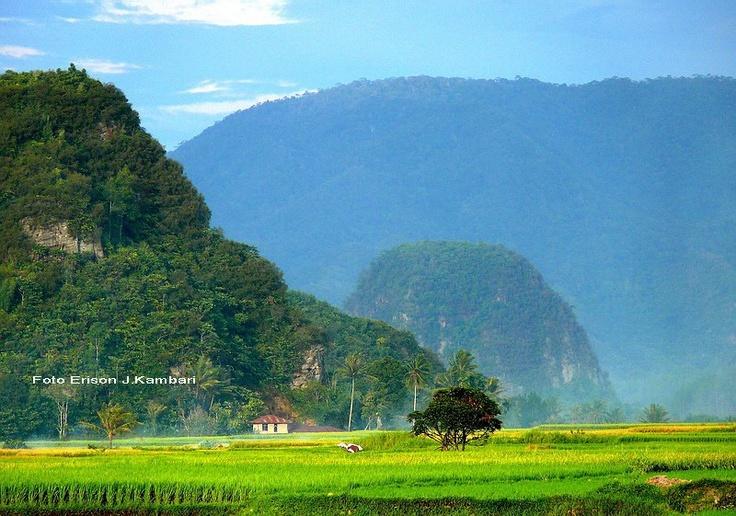 Bukit Bulek Taram, West Sumatra, Indonesia