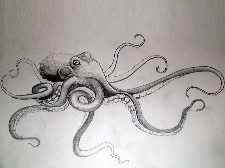 Giant octopus with long tentacles tattoo Wallpaper