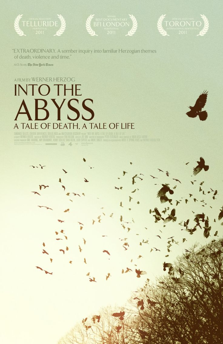 Into the Abyss is a true-crime drama, to be sure, but in Herzog's hands it becomes something much more: an inquiry into fundamental moral, philosophical, and religious issues, and an examination of humankind's capacity for violence - individual and institutional.