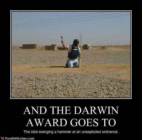 Best Awards Trophies And WellDeserved Accolades Images On - 22 people surely win darwin award