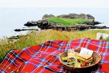 Ferryland Lighthouse Picnic!!!!  Certainly a highlight not to be missed